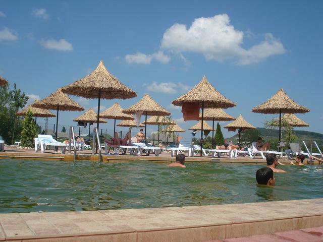 Туры на майские праздники Сиро-винный тур по Закарпатью