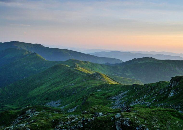 Однодневные экскурсии по Карпатам и Закарпатью Долина Нарциссов
