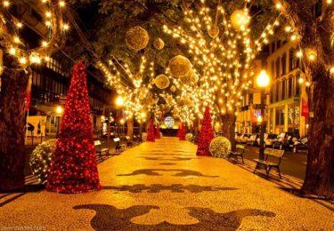 Новий рік у Карпатах (Манява-Драгобрат)