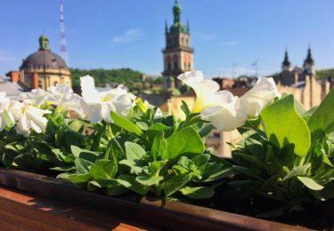 Свята, які варто відвідати у Львові весною