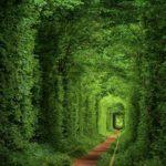 Тунель кохання